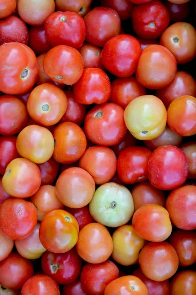 aerial close up shot of fresh tomato