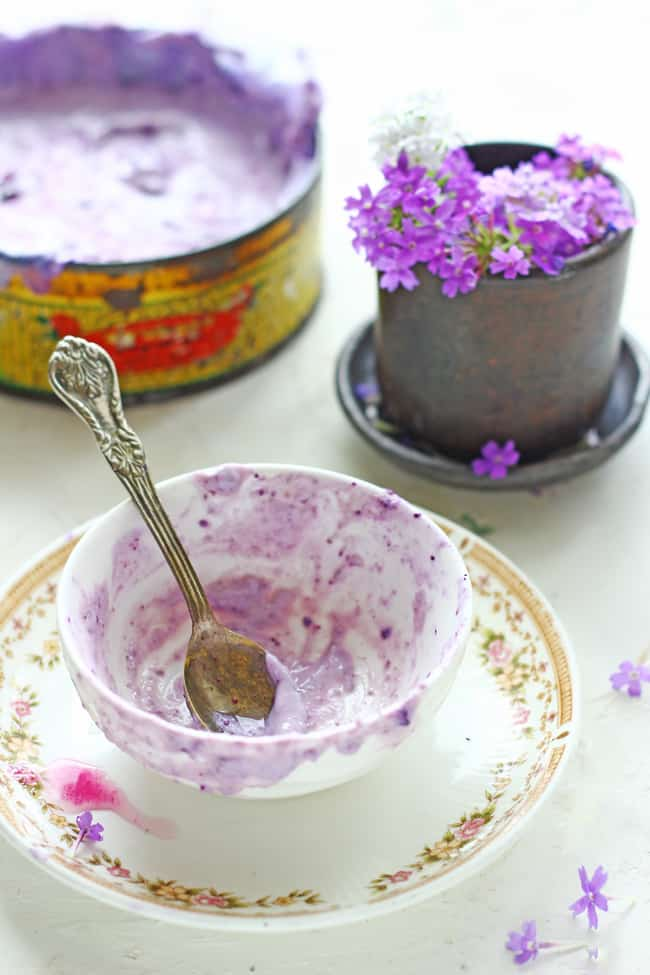 Homemade frozen yogurt tastes better than anything you can buy at store. Try this Jamun (Java Plum) Frozen Yogurt Recipe this season