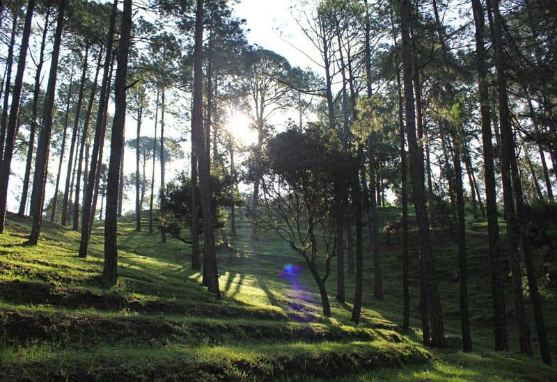 Ranikhet in the Kumaon region is the queen of hill stations in Uttarakhand. Read more about the best summer holiday in Ranikhet, Uttarakhand.
